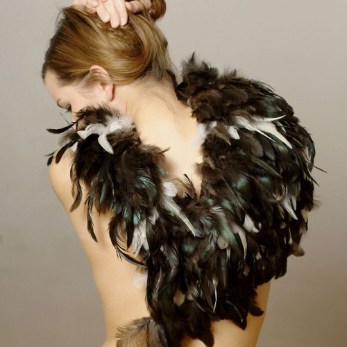 Maria Baumschlager-Dünser - feather creation 2004